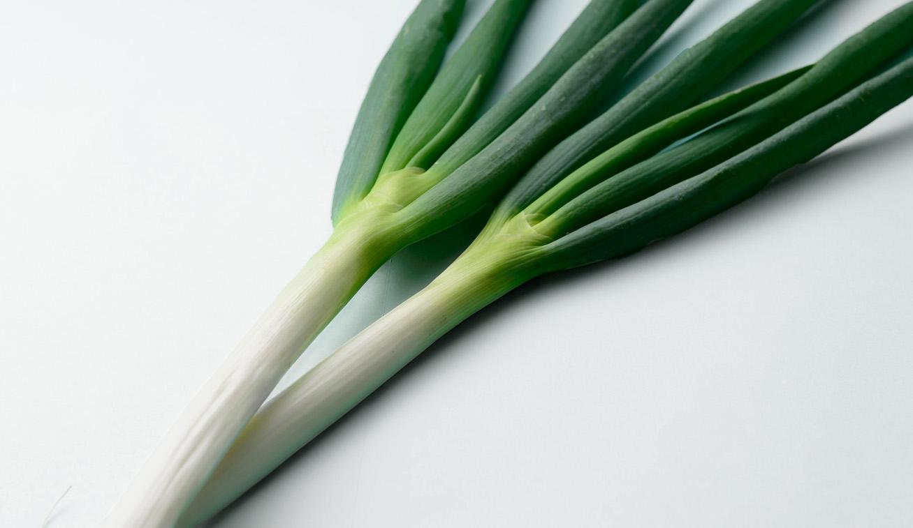 加賀野菜である金沢一本太ねぎ