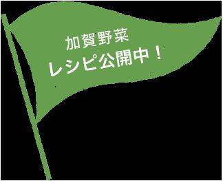 加賀野菜レシピ公開中!