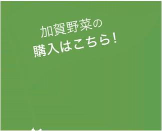 加賀野菜の購入はこちら!